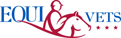 EQUI-KIDS | EQUI-VETS Donations